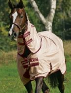 Amigo Mio Fly Rug old colour Rust & Burgundy