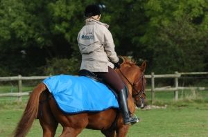 Bucas Quarter Sheet Riding Rug