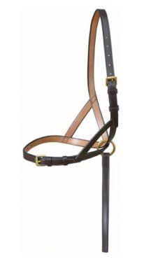 Best Foal Show Slip