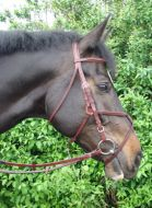 Amerigo Vespucci Grackle Bridle with Rubber Reins