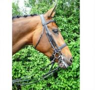 Amerigo Vespucci Double Bridle with Reins