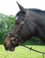 Amerigo Vespucci Flash Bridle with Rubber Reins