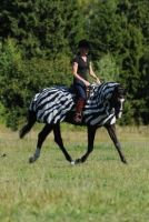 Bucas Buzz-off Zebra Riding
