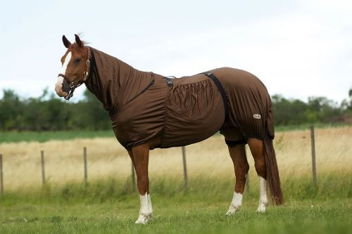 Equitheme Sweet-itch fly rug- Brown