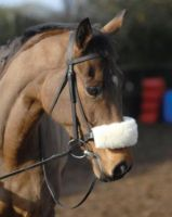 NuuMed Noseband Cover in Luxury Wool