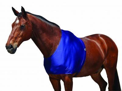 Weatherbeeta Stretch Shoulder Guard